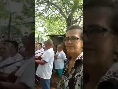 Companhia de Santos Reis de Alvorada Do Oeste-RO 2019