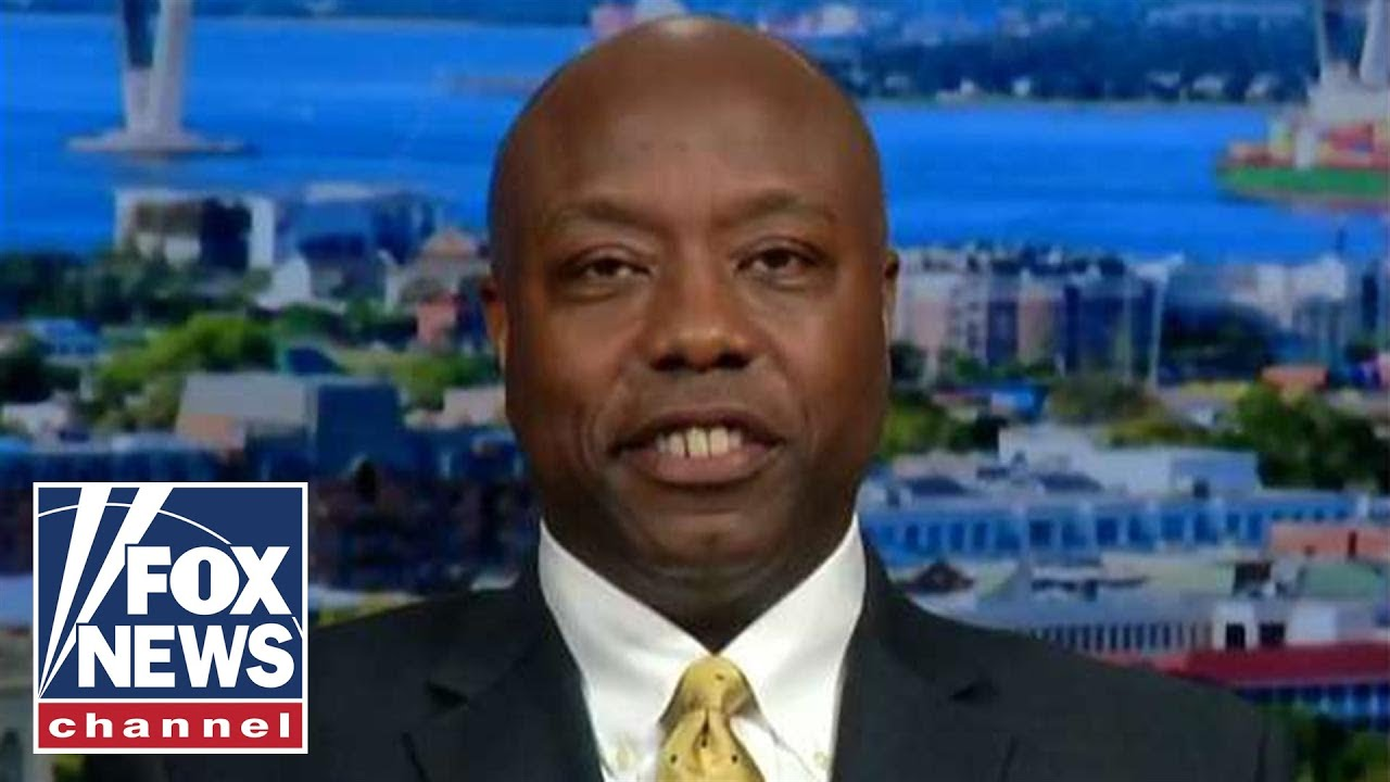FOX News Sen. Scott says Dems are trying to 'dupe African-American voters'