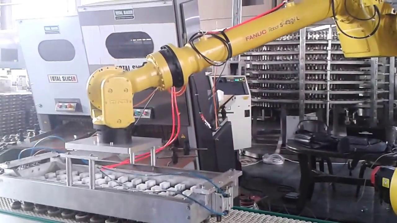 Fanuc Robot Siemens S7 300 PLC profibus Communication