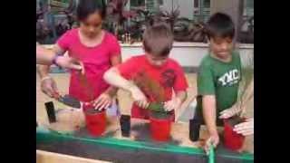 Joshua and the Kiribati Kids Plant Christmas Trees