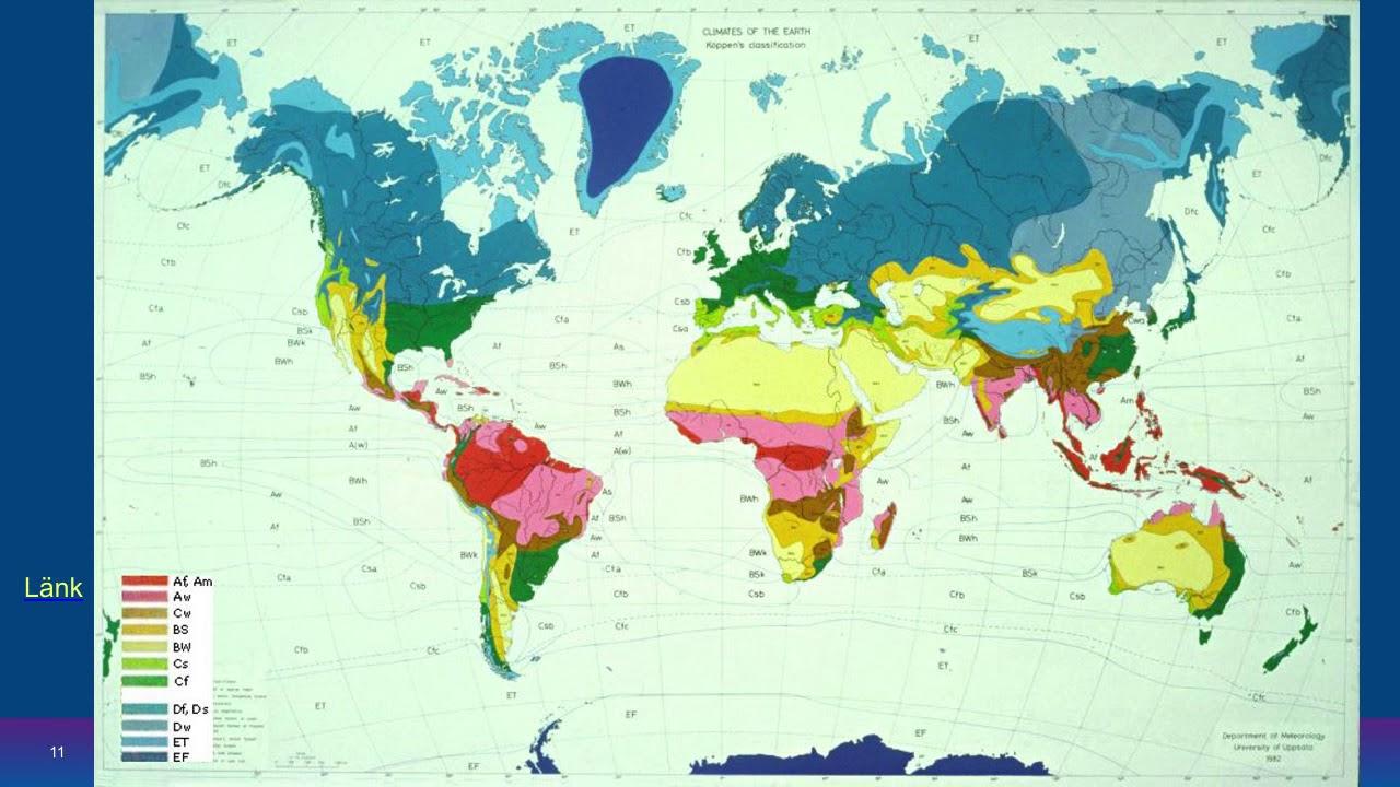 Klimatzoner och vegetationszoner samt globala vindsystem grundkurs