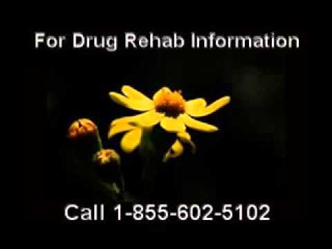 Mobile Number for a Government Funded Drug Rehab Centers Local to Victoria