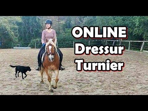 Turnier Online