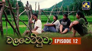 Walawettuwa Episode 12 || ''වලවෙට්ටුවා'' ||  14th JULY 2021 Thumbnail