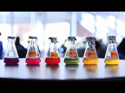 Applications of Nanoscience Summer Institute Final Presentations