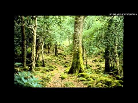 John Williams - The Five Sacred Trees: II. Tortan