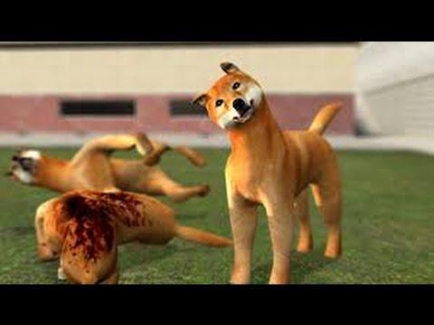 Garry's Mod - 2 ft Poupie | La société Doge !