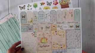 Обзор коллекции Осенняя история Mona Design