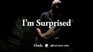 Watch Owls Im Surprised video