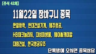 [주식42회]11월22일 장바구니 종목 ( 한일화학,현…