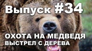 Выпуск 34: Видео охота на медведя смотреть 2013 Bear hunting in Russia.