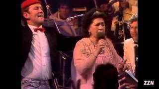 Zangeres Zonder Naam - Luister Anita (Live in Paradiso)