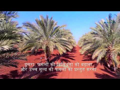 Indo Israel Agricultural Project Hindi Short Movie