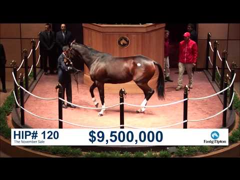 The November Sale (2017): SONGBIRD sells for $9.5M
