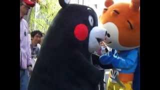くまモン VS ほやぼーや 2012 05 05