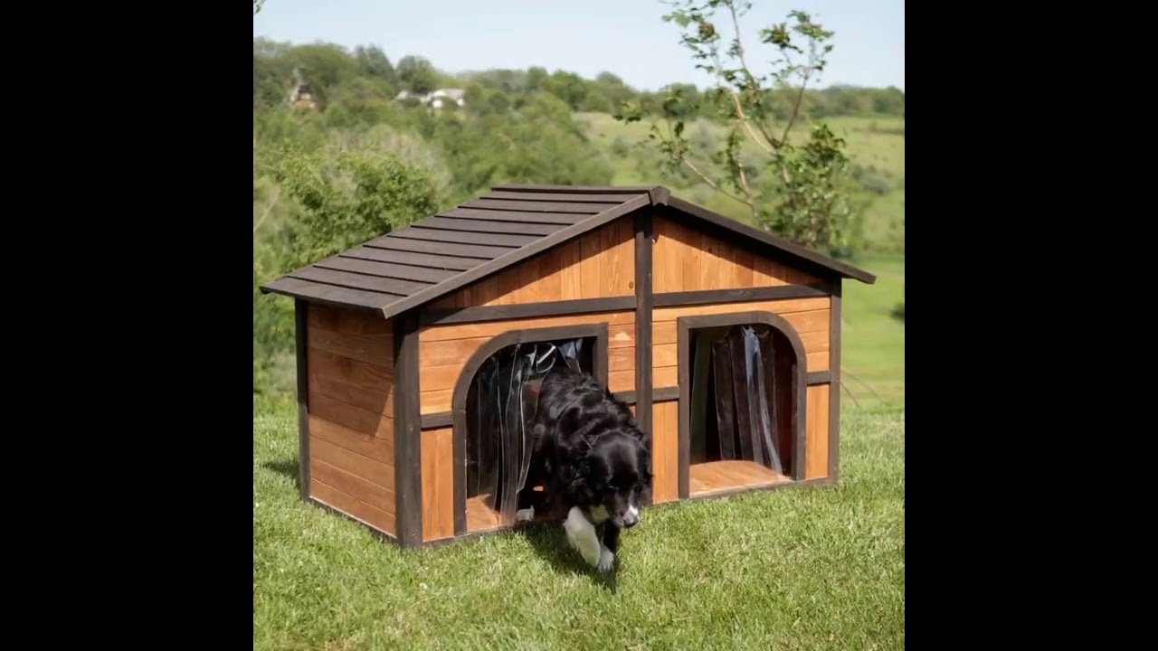 Merry products darker stain duplex dog house with free dog for Large duplex dog house