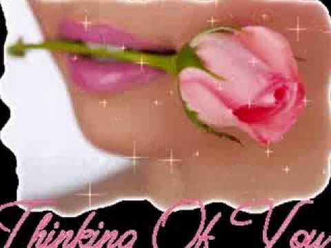 Portami Tante Rose (2) - Camaleonti