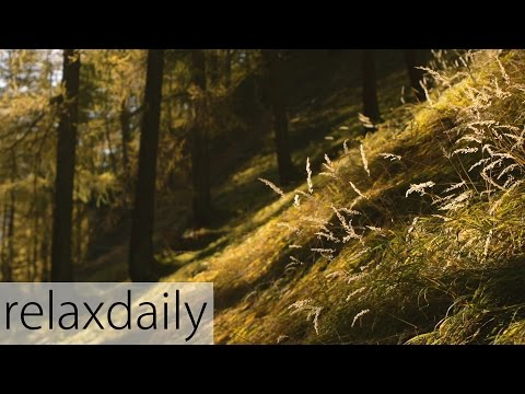 Relaxing Piano Music - smooth, yoga, study, relax – relaxdaily N°094