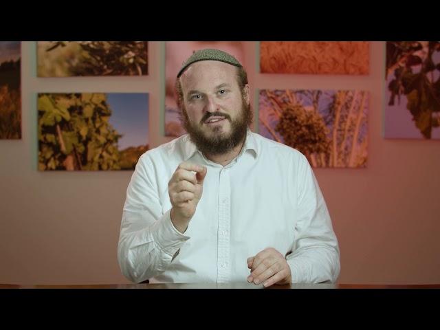 Vayeshev  – Who's Your Angel – Rabbi Shlomo Katz