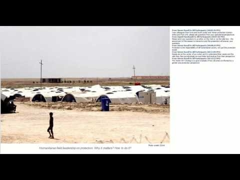STAIT Webinar: Humanitarian field leadership on protection:  Why it matters? How to do it?