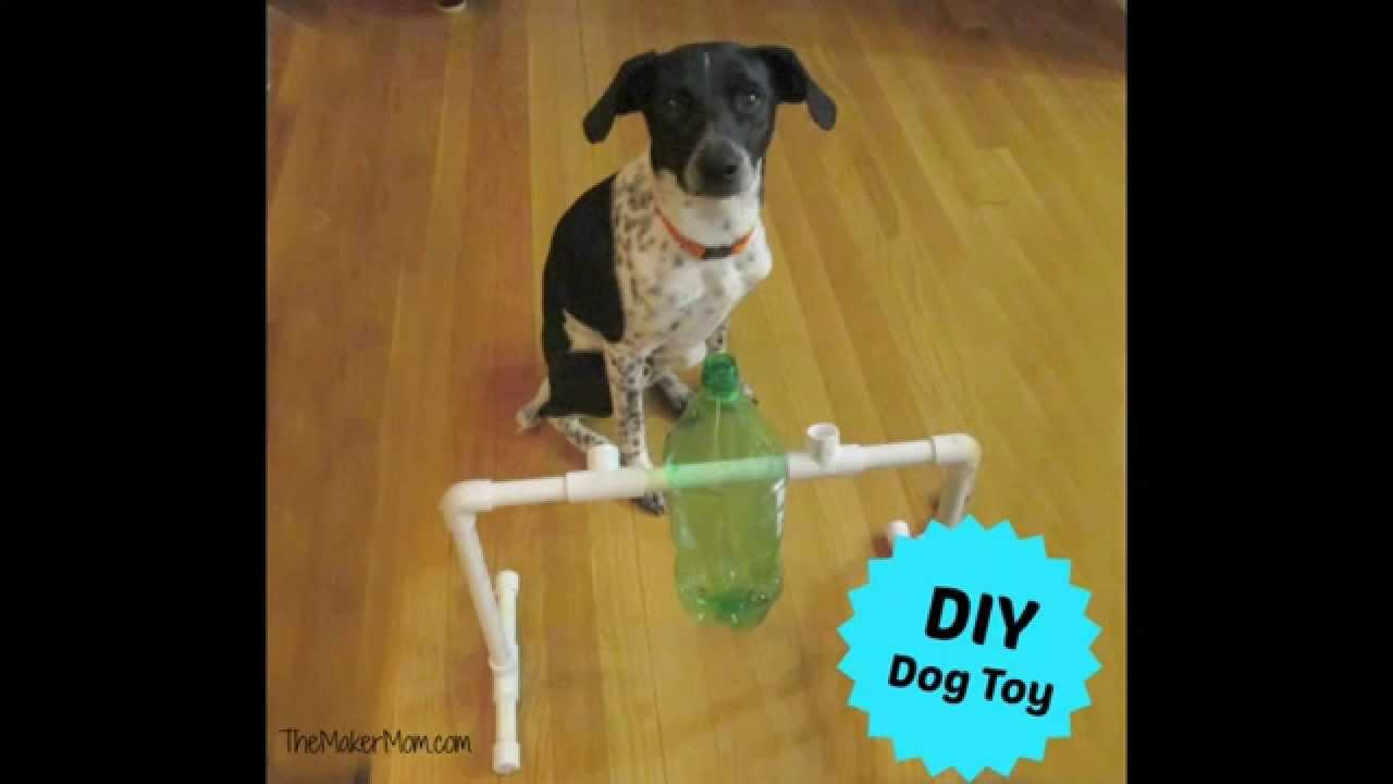 Dog Treat Dispenser >> Fun DIY Dog Toy and Treat Dispenser - YouTube