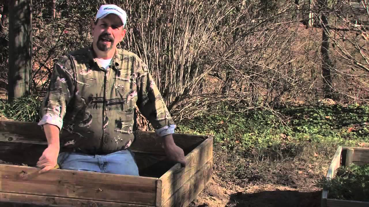 Health Concerns About Treated Wood for Garden Boxes