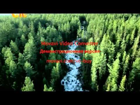Пока цветет папоротник 3 серия   YouTube 360p