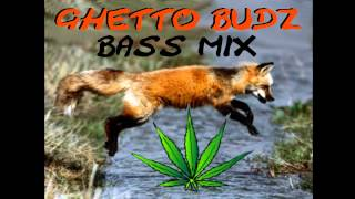 DJ Alex R - Ghetto Budz Party Mix (Ghetto Funk, Breaks, Wonky House, Jungle, Drum & Bass)