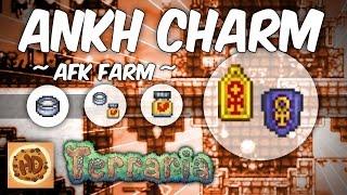 Terraria 1.3 AFK Vitamins, Armor Polish, & Mimic Farm | Make the Ankh Charm Series #4 |