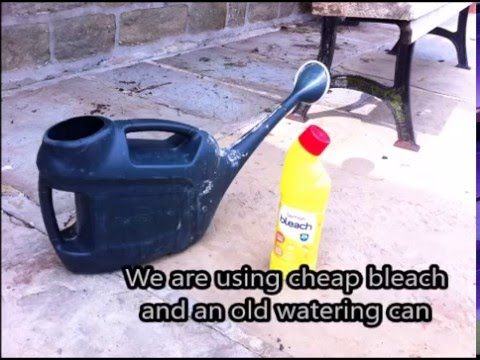 How To Clean Paving Slabs With Bleach And Water Youtube
