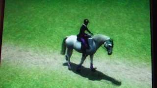 The equestrian horse game