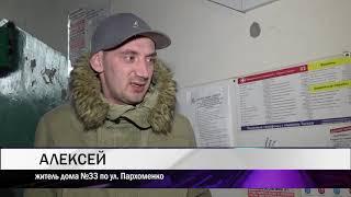14 03 Тагильчанка превратила квартиру в кошачий питомник