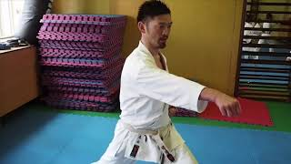 SENSEI RYOSUKE SHIMIZU