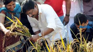Agriculture Tips from Sreenivasan
