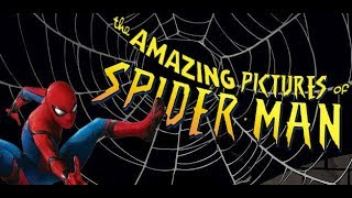 Clip Show - The Amazing Pictures of Spider-Man