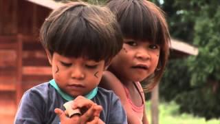 S.O.S Amazônia: un Chef indigène lance un appel au monde entier - sous-titré Fr.