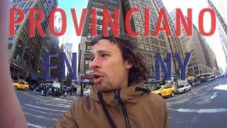 Lobo solitario en Nueva York | Provinciano en NY