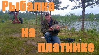Рыбалка на фидер на платнике в Лепсари