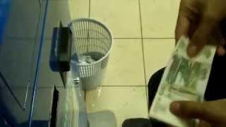 заработок в интернете от 100 рублей в день с выводом на киви заработок заработок 5000 рублей