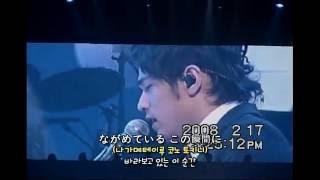 周杰倫(주걸륜) - 雪の華(눈의꽃) live  / 촬영:랑이님 (2008.02.17 일본 콘서트中)