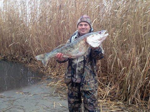 Осенняя рыбалка на