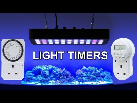 Automatic Light Timer – Automate Your Aquarium