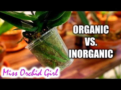 Organic Vs. Inorganic Orchid medium - Which is better?