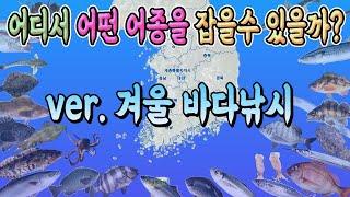 겨울시즌 낚시어종 정보…