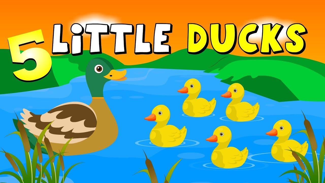 Duck Song  Kids