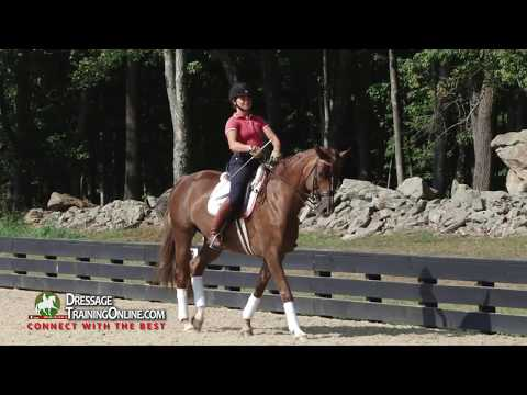How to do a very effective Prix St. George warm up with Dressage trainer Catherine Haddad Staller