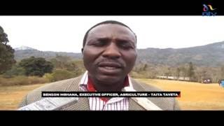 Farmers in Taita Taveta benefit from farming incentives from county government