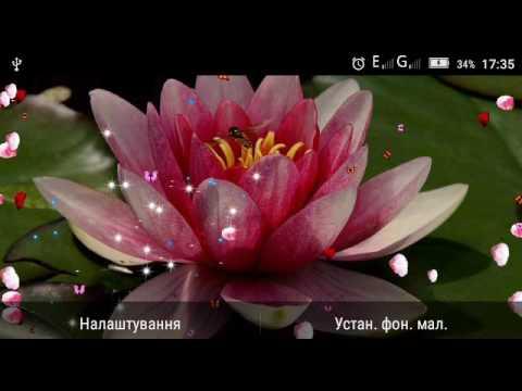 Free Flowers HD Live Wallpaper