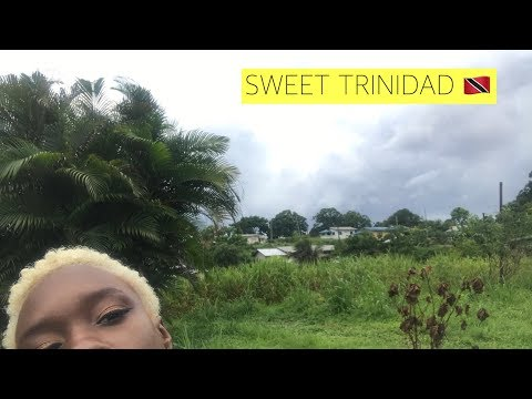 TRINIDAD & TOBAGO VLOG #1   AHINTOFSPIICE