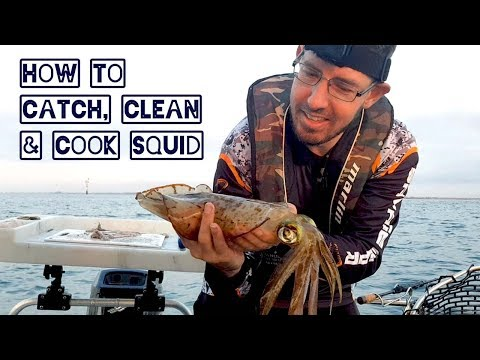 How To Catch And Cook Squid With Fishing Mad